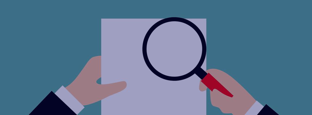 Search Audit